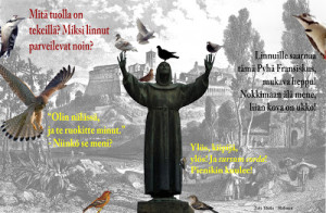 Saarnaa linnuille