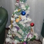 IMG_0204 Joulukuusi 2006 03 25