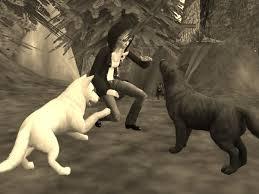 hyvä ja paha susi